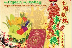 Lunar New Year organic daikon cake
