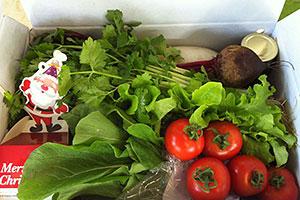 Organic Farm Christmas hamper