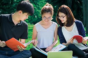 Report No. 23 HKFYG Youth I.D.E.A.S.