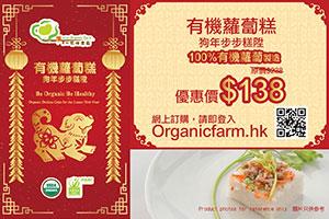 Organic Lunar New Year daikon cake